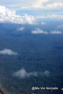 La forêt papoue vue d'avion