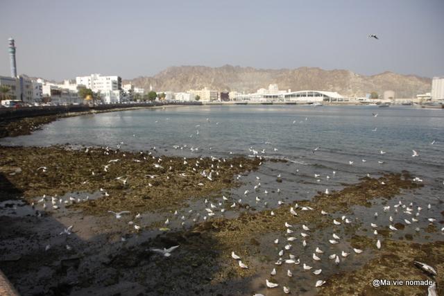 Corniche de Mutrah